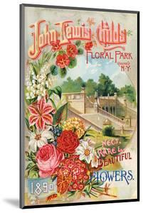 Childs Queens Flowers Catalog