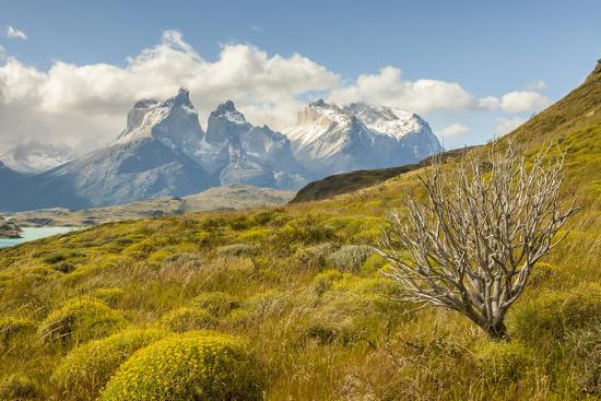Chile, Patagonia. Lake Pehoe and The Horns mountains.-Jaynes Gallery-Premium Photographic Print