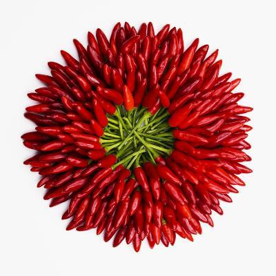Chili Peppers--Premium Photographic Print