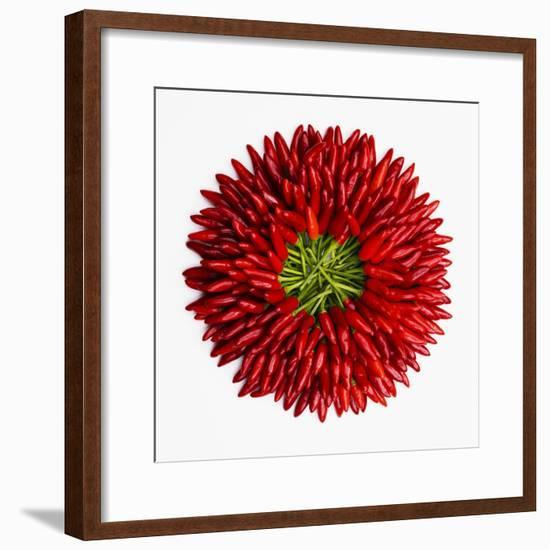 Chili Peppers--Framed Premium Photographic Print