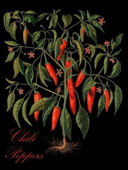 Chili Peppers-Mindy Sommers-Giclee Print
