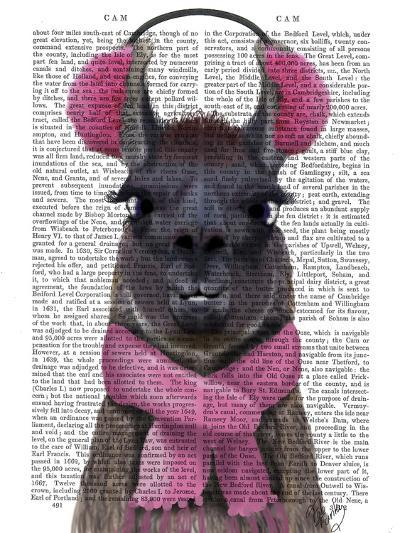 Chilly Llama, Pink-Fab Funky-Art Print