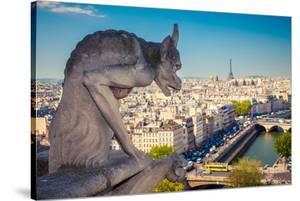 Chimera Notre Dame-Paris