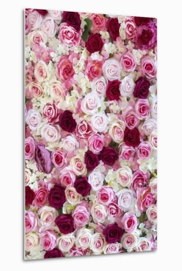 China 10MKm2 Collection - 1001 Roses-Philippe Hugonnard-Metal Print