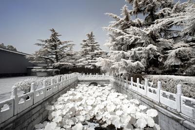 https://imgc.artprintimages.com/img/print/china-10mkm2-collection-another-look-lotus-bridge_u-l-pz6n030.jpg?p=0