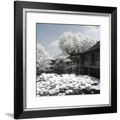 China 10MKm2 Collection - Another Look - Park Temple-Philippe Hugonnard-Framed Photographic Print