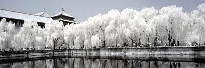 China 10MKm2 Collection - Another Look - Reflections-Philippe Hugonnard-Photographic Print