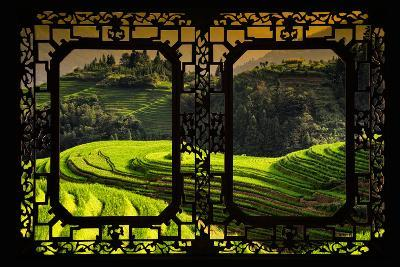 China 10MKm2 Collection - Asian Window - Rice Terraces - Longsheng Ping'an - Guangxi-Philippe Hugonnard-Photographic Print
