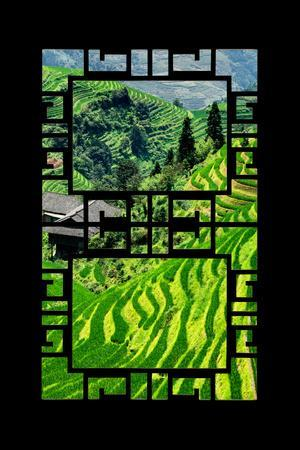 China 10MKm2 Collection - Asian Window - Rice Terraces - Longsheng Ping'an - Guangxi-Philippe Hugonnard-Photographic Print