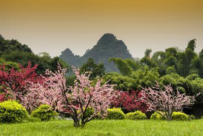 China 10MKm2 Collection - Beautiful Asian Garden-Philippe Hugonnard-Photographic Print