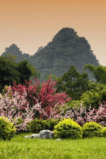 China 10MKm2 Collection - Beautiful Asian Garden-Philippe Hugonnard-Photographic Print