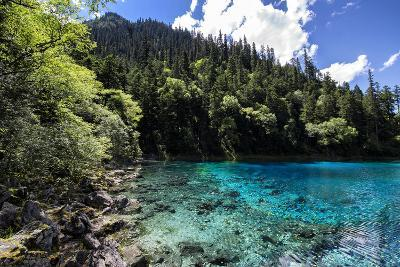 China 10MKm2 Collection - Beautiful Lake in the Jiuzhaigou National Park-Philippe Hugonnard-Photographic Print