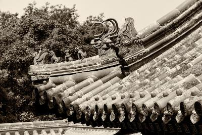 China 10MKm2 Collection - Detail of Lama Temple-Philippe Hugonnard-Photographic Print