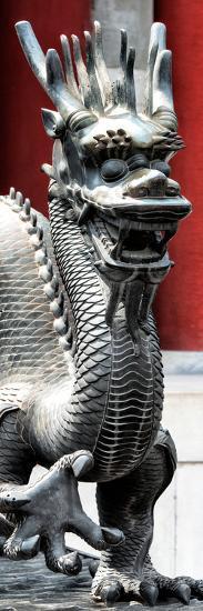 China 10MKm2 Collection - Dragon-Philippe Hugonnard-Photographic Print