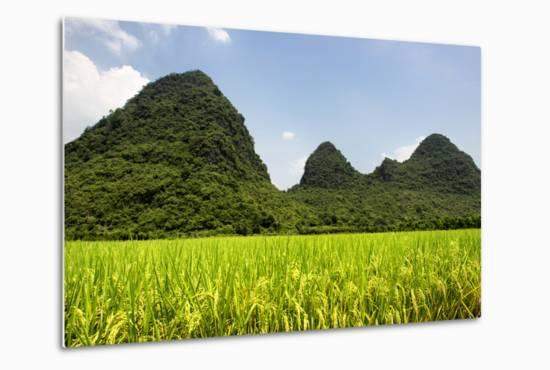 China 10MKm2 Collection - Karst Moutains in Yangshuo-Philippe Hugonnard-Metal Print