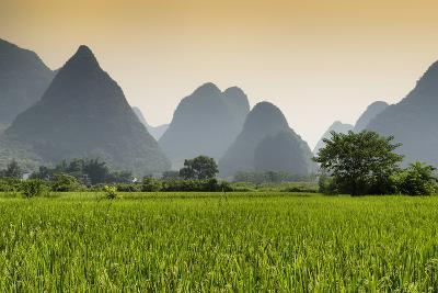 China 10MKm2 Collection - Karst Moutains in Yangshuo-Philippe Hugonnard-Photographic Print