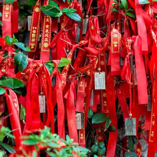 China 10MKm2 Collection - Prayer Ribbons - Buddha Temple-Philippe Hugonnard-Photographic Print