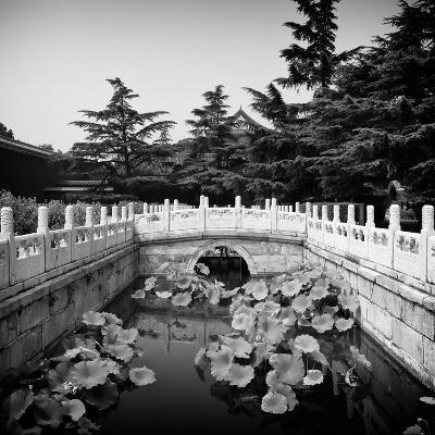 China 10MKm2 Collection - River of Gold - Forbidden City-Philippe Hugonnard-Photographic Print