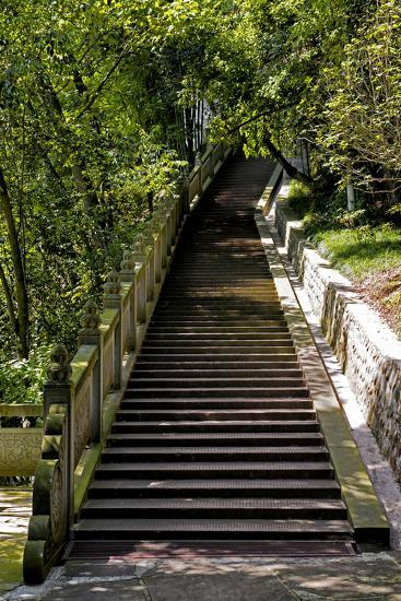 China 10MKm2 Collection - Stairway in the Forest-Philippe Hugonnard-Photographic Print