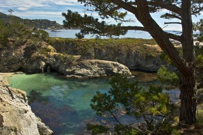 China Cove, Point Lobos State Reserve, Carmel, California, USA-Michel Hersen-Photographic Print