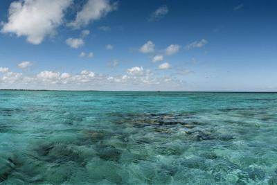 https://imgc.artprintimages.com/img/print/china-point-reef-off-andros-island_u-l-pwda5z0.jpg?p=0
