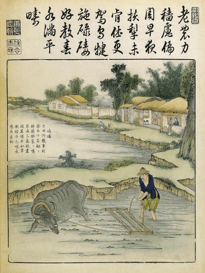 China, Work in Rice Fields During Ming Era, 1696-Yu Tche Keng Tche T'Ou-Giclee Print