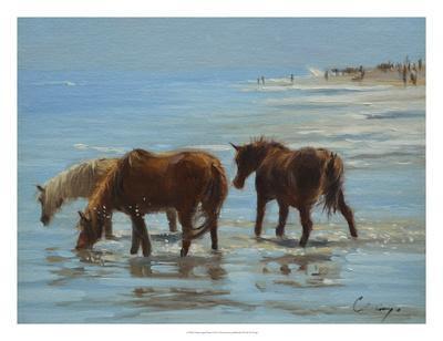https://imgc.artprintimages.com/img/print/chincoteague-ponies_u-l-f8faei0.jpg?p=0