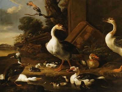 Chinese and Egyptian Geese and Other Birds in a Landscape with Ruins Nearby-Melchior de Hondecoeter-Giclee Print