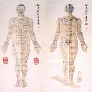 Chinese Chart of Acupuncture Points on a Male Body, 1956