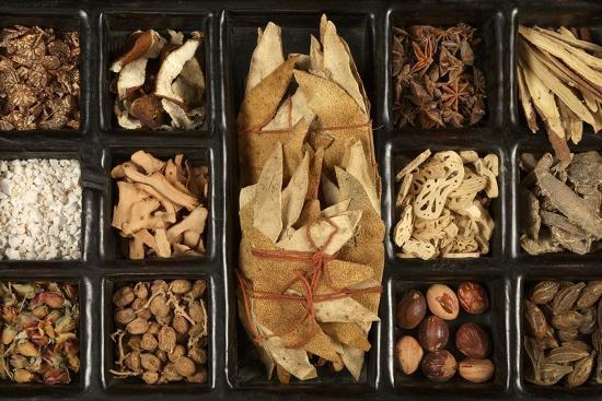 Chinese Medicinal Herbs--Photographic Print
