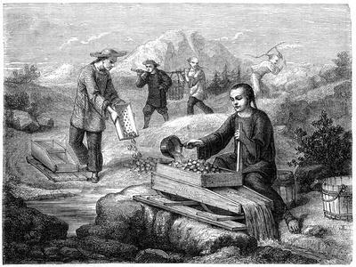 https://imgc.artprintimages.com/img/print/chinese-miners-california-19th-century_u-l-ptg8ba0.jpg?p=0