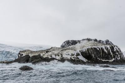 Chinstrap Breeding Colony at Point Wild, Elephant Island, South Shetland Islands, Antarctica-Michael Nolan-Photographic Print