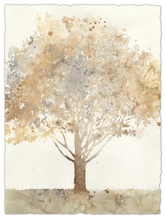 https://imgc.artprintimages.com/img/print/chloe-s-tree-i_u-l-f657oe0.jpg?p=0