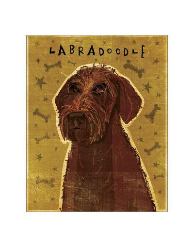 Chocolate Labradoodle-John Golden-Giclee Print