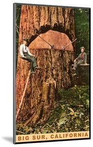 Chopping Down a Redwood, Big Sur, California