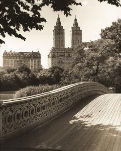 Central Park Bridges 1 by Chris Bliss