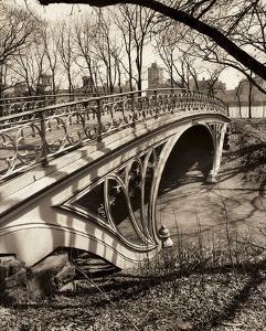 Central Park Bridges 3 by Chris Bliss