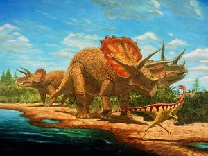 Cretaceous Dinosaurs by Chris Butler