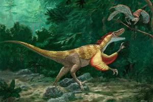 Feathered Dinosaurs by Chris Butler