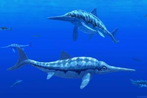 Ichthyosaur Marine Reptiles by Chris Butler