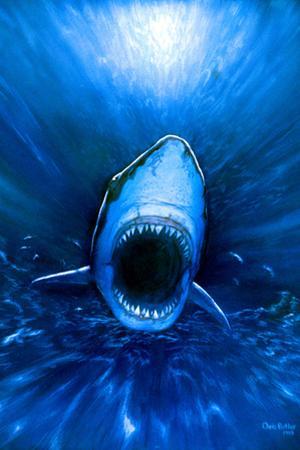 Shark Attack by Chris Butler