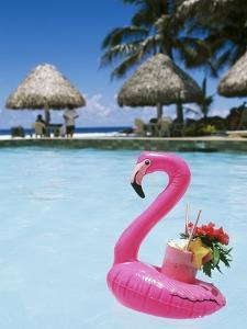 Cook Islands, South Pacific, Rarotonga, Tropical Drink in Pink Flamingo Float by Chris Cheadle