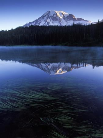 USA, Mount Rainier National Park, Morning View from Reflection Lake by Chris Cheadle