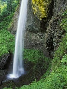USA, Oregon, Columbia River Gorge Area, Scenic Waterfalls, Latourelle Falls by Chris Cheadle