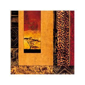 African Studies I by Chris Donovan