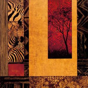 African Studies II by Chris Donovan