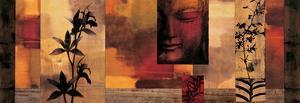 Dharma II by Chris Donovan