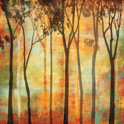 Magical Forest I by Chris Donovan