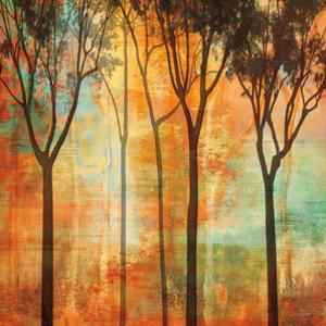 Magical Forest II by Chris Donovan