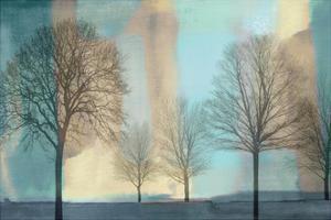 Misty Morning I by Chris Donovan